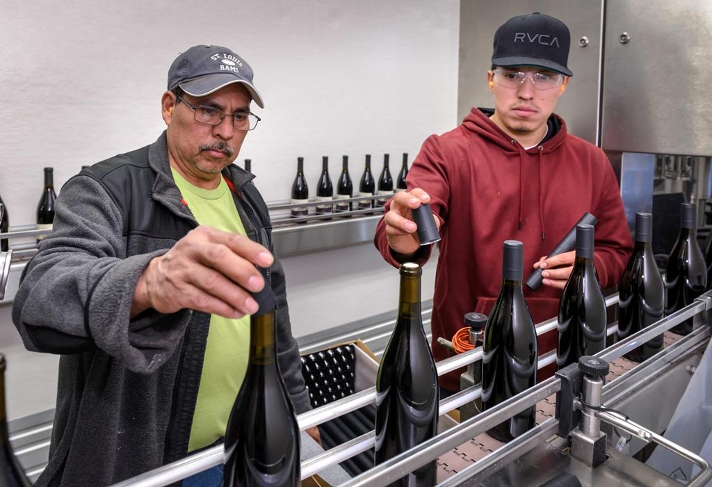 20160211-Bottling-7